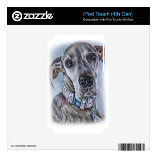 Great Dane Dog Drawing Design Skin For iPod Touch 4G