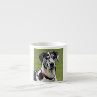Great Dane dog harlequin beautiful photo, gift Espresso Cup