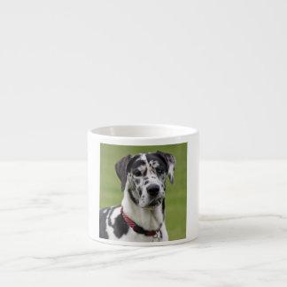 Great Dane dog harlequin beautiful photo, gift Espresso Cup