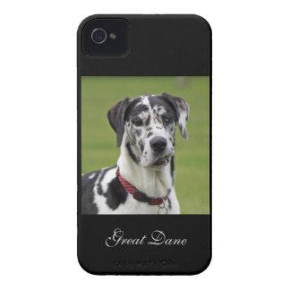 Great Dane dog harlequin beautiful photo, gift iPhone 4 Case
