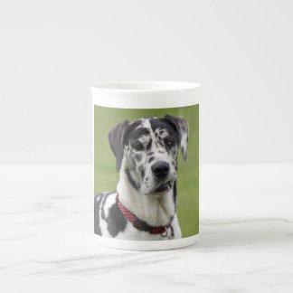 Great Dane dog harlequin beautiful photo, gift Porcelain Mug