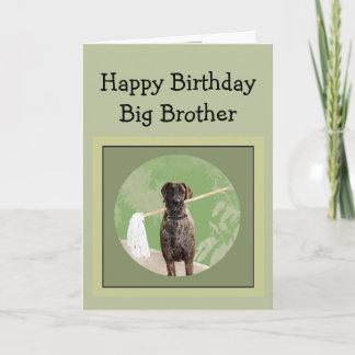 Great Dane Dog Humor Birthday Big Brother Fun Card