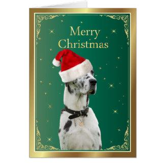 Great Dane dog in red santa hat christmas card