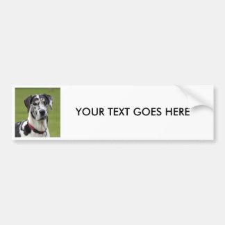 Great Dane dog photo custom bumper sticker Car Bumper Sticker