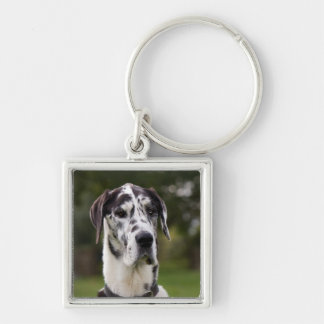 Great Dane dog portrait keychain, gift idea Silver-Colored Square Keychain