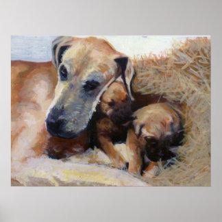 Great Dane Dog Portrait Poster