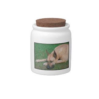 Great Dane Dog Treat Candy Jar
