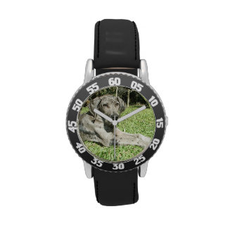 Great Dane Dog Wrist Watch
