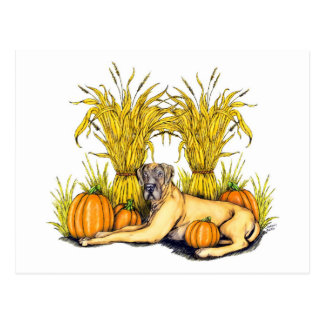 Great Dane Fawn Harvest UC Postcard