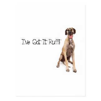 Great Dane Got It Ruff Postcard