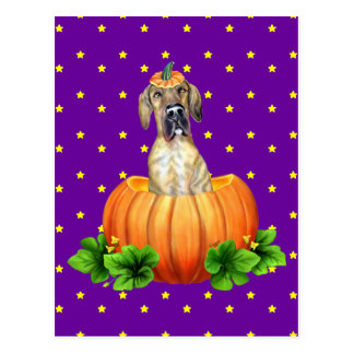 Great Dane Halloween Brindle UC Dane-O-Lantern Postcard