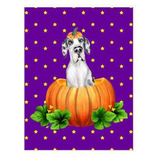 Great Dane Halloween Harlequin UC Dane-O-Lantern Postcard