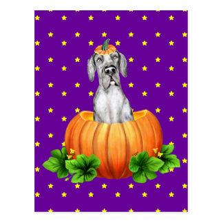 Great Dane Halloween Merle UC Dane-O-Lantern Postcard