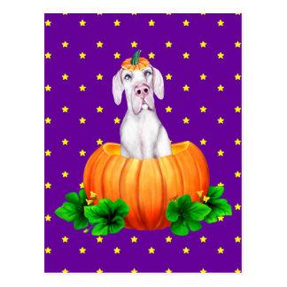 Great Dane Halloween White UC Dane-O-Lantern Postcard