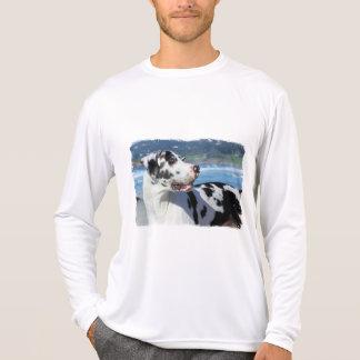 Great Dane - Harlequin - Bogey Shirt