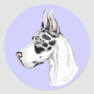 Great Dane Harlequin Feminine Classic Round Sticker