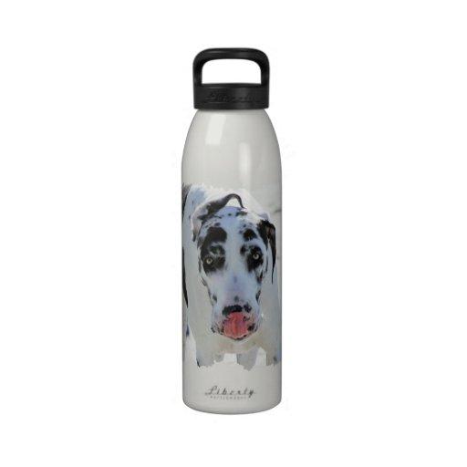 Great dane - Harlequin - mi lengua toca mi nariz Botella De Agua Reutilizable