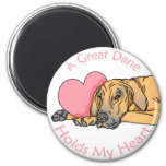 Great Dane Holds Heart Fawn UC Magnets