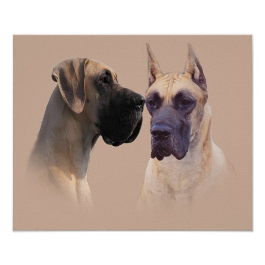 Great Dane King of Dogs Print