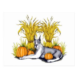 Great Dane Mantle Harvest Postcard