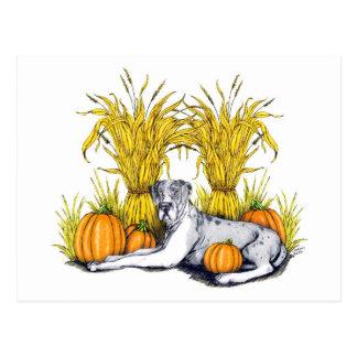 Great Dane Merle Harvest UC Postcard