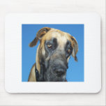Great Dane Mouse Pads