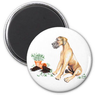 Great Dane Naughty Pup Fawn UC Magnet