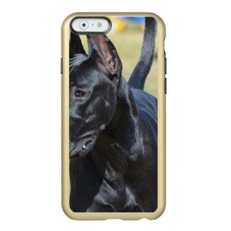Great dane negro magnífico funda para iPhone 6 plus incipio feather shine