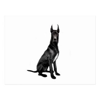 Great dane - negro (oídos cosechados) tarjeta postal