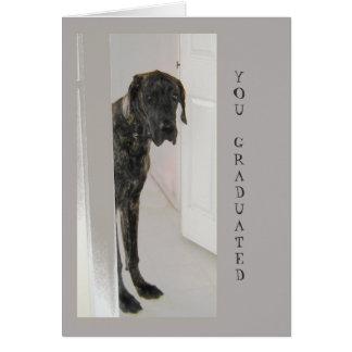 Great Dane Pet Dog Humor Congratulations Grad Card