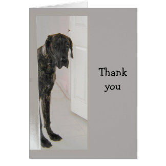 Great Dane  Pet Dog Humor Thank you Card