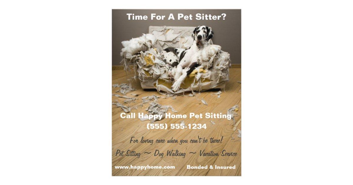 Great Dane Pet Sitting Flyer Zazzle