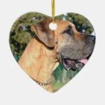 Great Dane Photo Ornaments