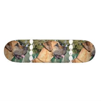 Great Dane Photo Skateboard