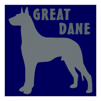 Great dane póster
