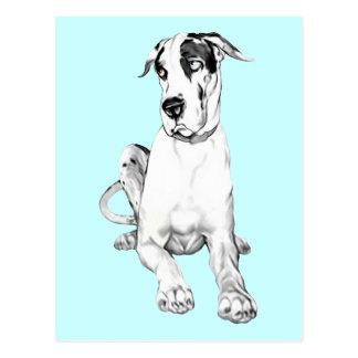 Great Dane Pouting Harlequin Postcard