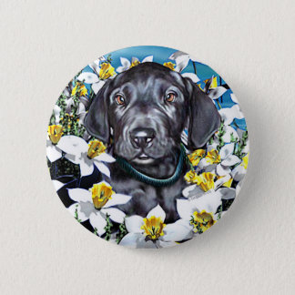 Great Dane Pup in Daffodils Black Button