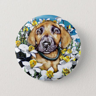 Great Dane Pup in Daffodils Fawn Button