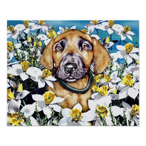 Great Dane Pup in Daffodils Fawn Poster