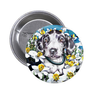 Great Dane Pup in Daffodils Harlequin Pinback Buttons