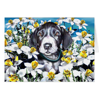 Great Dane Pup in Daffodils Mantle Card