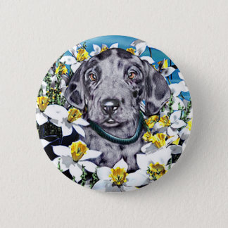 Great Dane Pup in Daffodils Merle Button