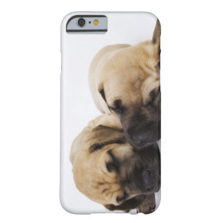 Great Dane puppies sleeping side by side in Barely There iPhone 6 Case