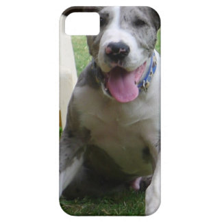 Great Dane Puppy iPhone 5 Covers