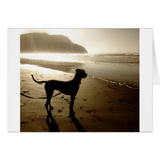 Great Dane Puppy Sunset Greeting Card