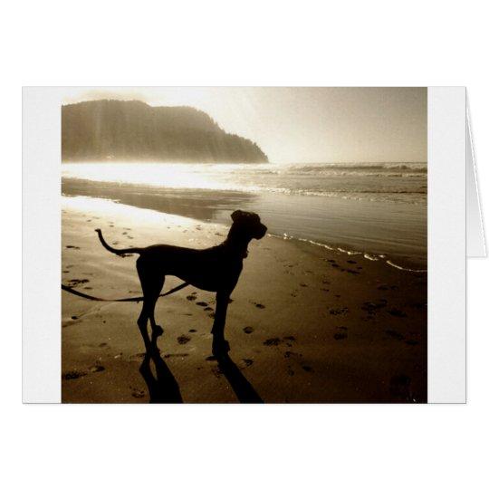 Great Dane Puppy Sunset Card