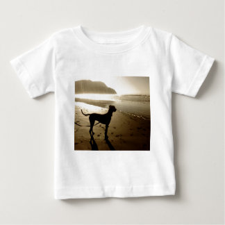 Great Dane Puppy Sunset T-shirt