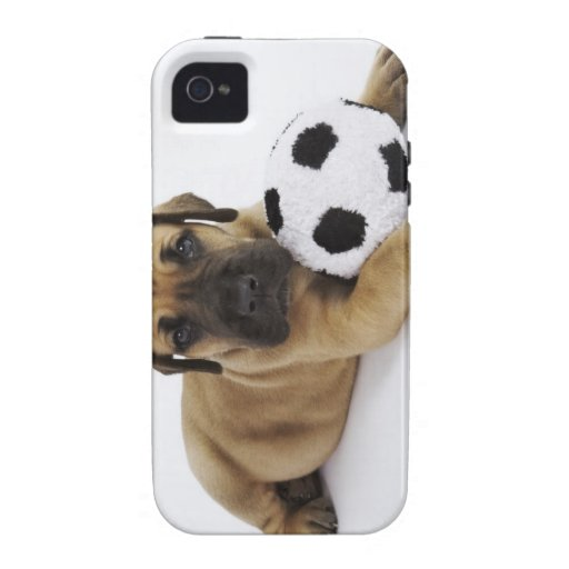 Great Dane puppy with toy soccer ball Case For The iPhone 4