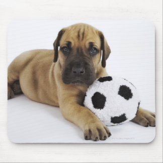 Great Dane puppy with toy soccer ball Mouse Pad