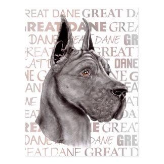 Great Dane Show Colors Black Postcard